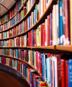 Books on shelves at Willow Library