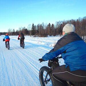 People fat tire biking in Willow Alaska