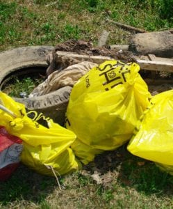 Trash in bags ready for pick up